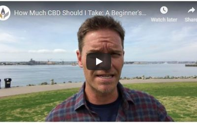 [VIDEO] How much CBD should I take???