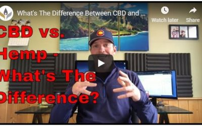 The difference between hemp and CBD